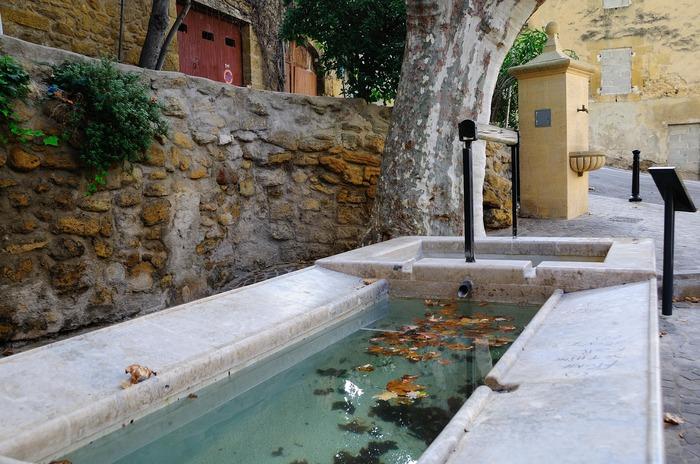 Crédits image : office de tourisme- Salon de Provence