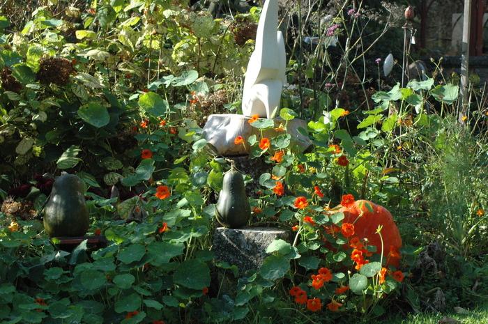 Crédits image : crédit photo : le jardin des métamorphozes
