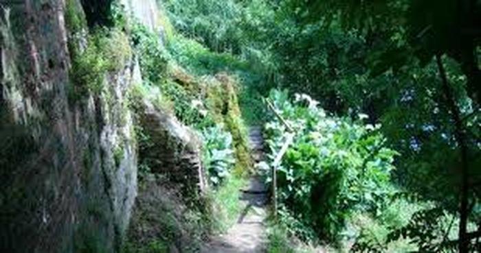 Journées du patrimoine 2017 - Patrimoine paysager… Les berges du Tarn