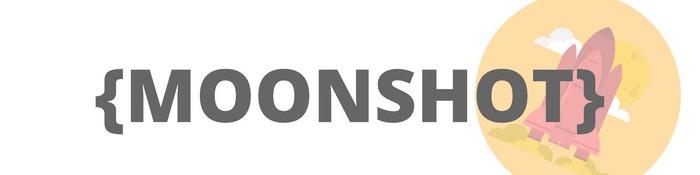 PISCINE MOONSHOT 2017