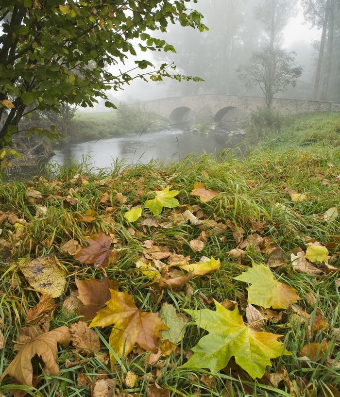Crédits image : Pont de l'Isch Wolfskirchen - Yvon MEYER CCAB
