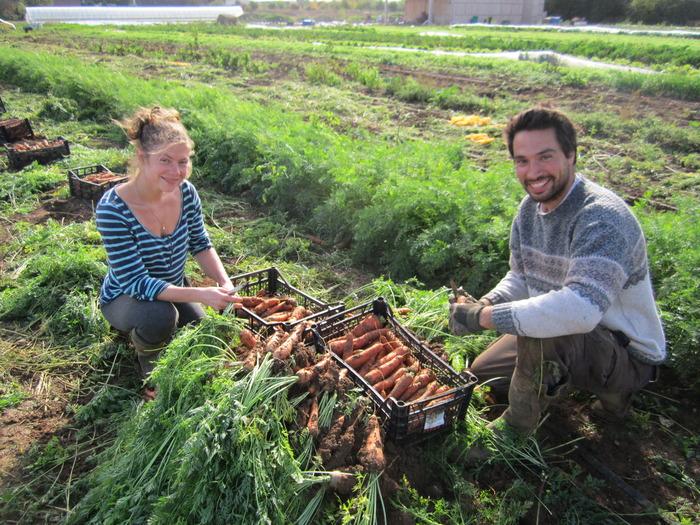 Journées du patrimoine 2018 - Portes ouvertes de la ferme sapousse