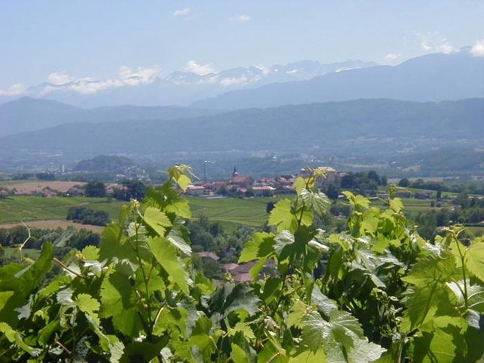 Journées du patrimoine 2018 - Projection d'un documentaire sur le patrimoine viticole.
