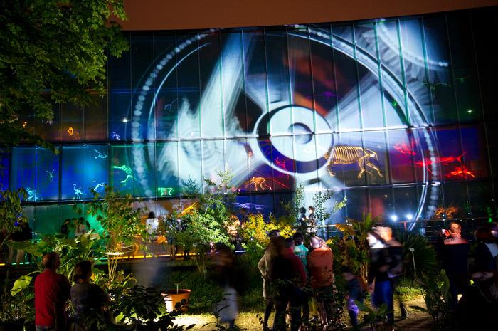 Nuit des musées 2019 -Quartier Libre dans le quartier des Sciences !