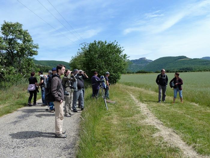 Journées du patrimoine 2017 - Le patrimoine naturel: Quelles sont les potentialités de développement touristique dans la Vallée de la Drôme?