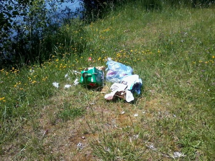 Ramassage de déchets au bois de Grandmont