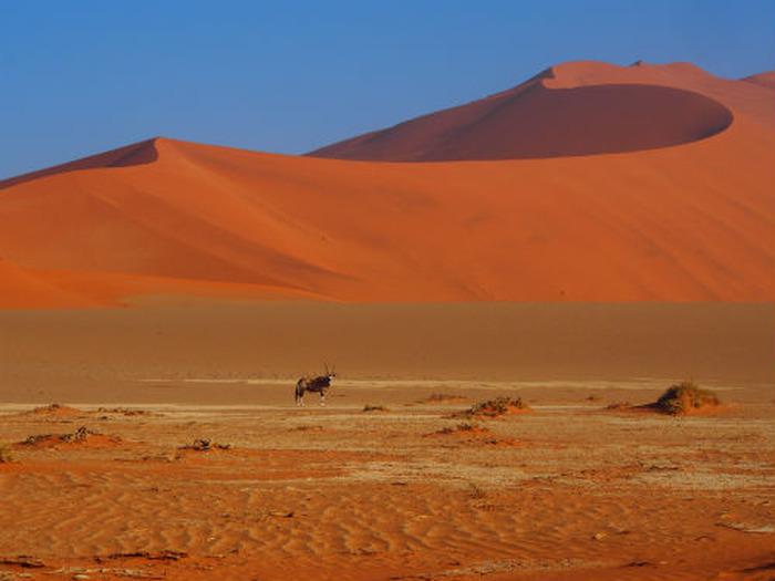 L'AFRIQUE AUSTRALE