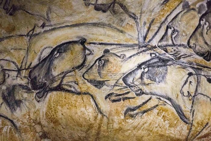 Journées du patrimoine 2018 - Rencontres autour du lion des cavernes