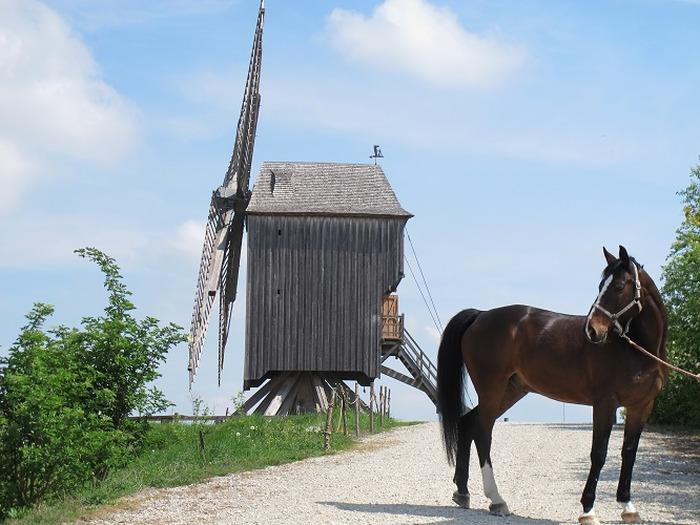 Journées du patrimoine 2018 - Site du Moulin de Dosches