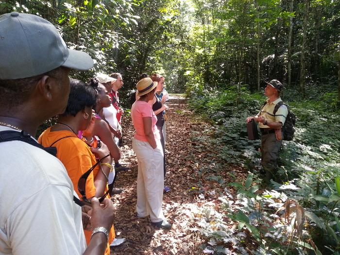 Journées du patrimoine 2018 - Sortie à l'arboretum de la forêt des Malgaches