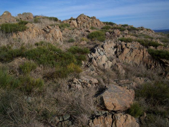 Journées du patrimoine 2018 - Sortie nature à la découverte du Puy de Wolf, site Natura 2000