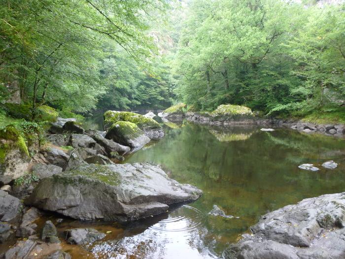 Journées du patrimoine 2018 - Sortie nature guidée au coeur des gorges du Cher.