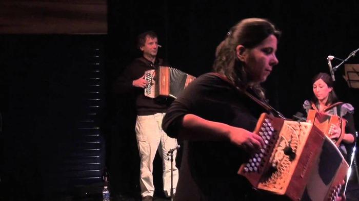 Stage d'accordéon diatonique