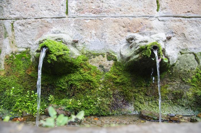 Journées du patrimoine 2018 - De fontaine en jardins, l'eau en partage à Navarrenx