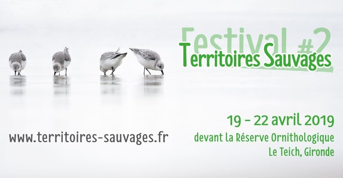 Territoires Sauvages #2 : festival nature en Nouvelle-Aquitaine
