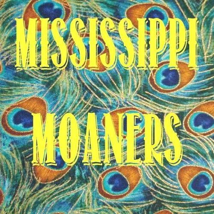 Journées du patrimoine 2017 - The Mississippi Moaners - Soul