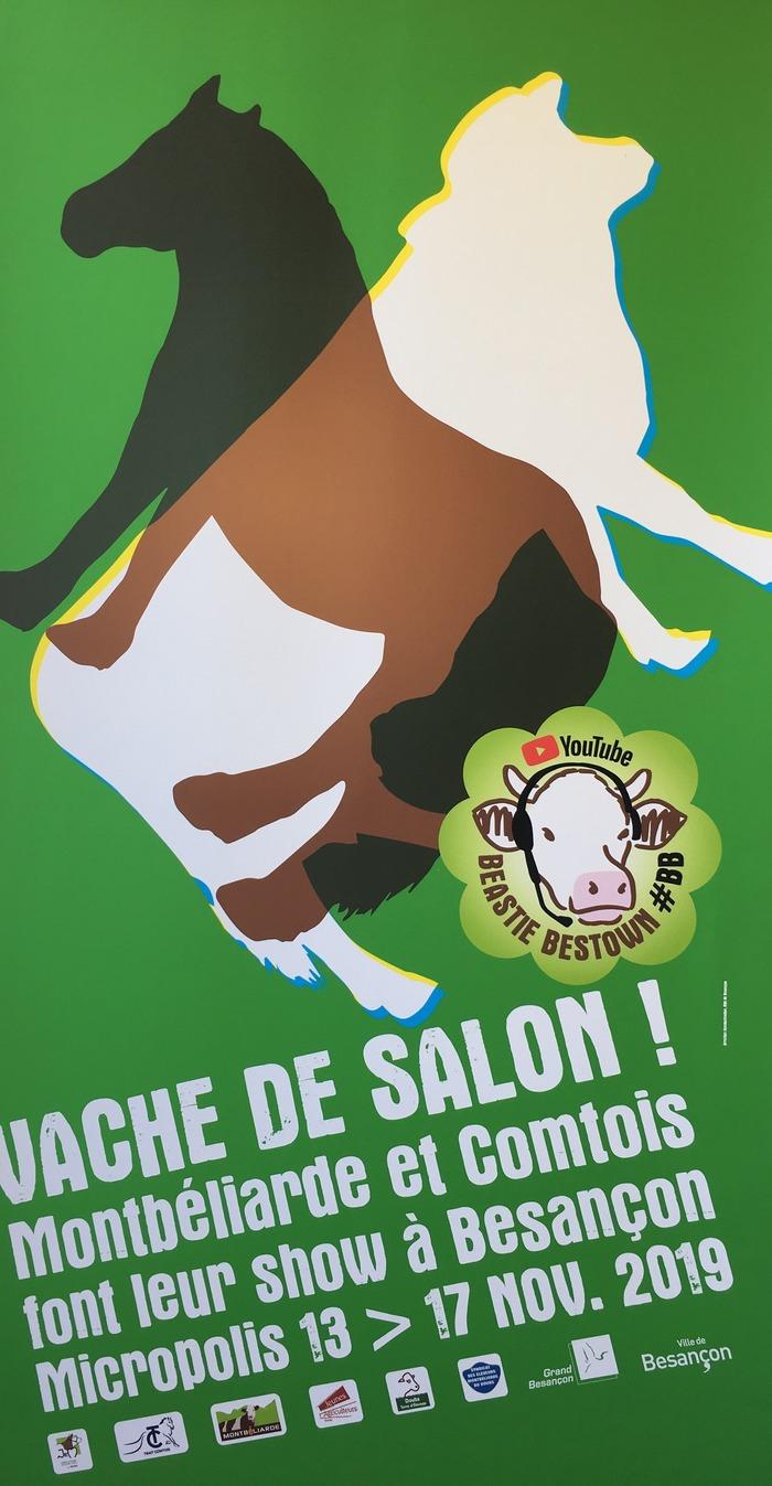 Vache de Salon, à Besançon (25)