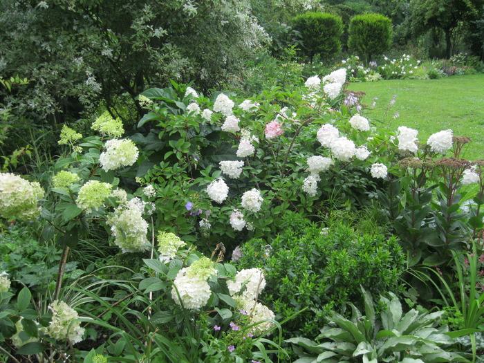Venez d couvrir un jardin romantique cr par des for Cree un jardin