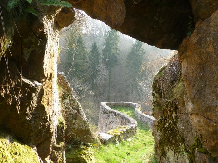 Journées du patrimoine 2017 - Venez visiter le parc du château d'Orbigny