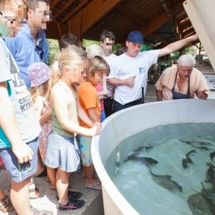 Journées du patrimoine 2018 - Visite commentée de la pisciculture de Rives