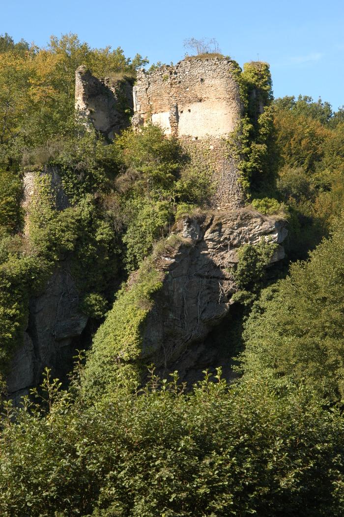 Journées du patrimoine 2018 - Visite commentée du château de la Roche Guillebaud.