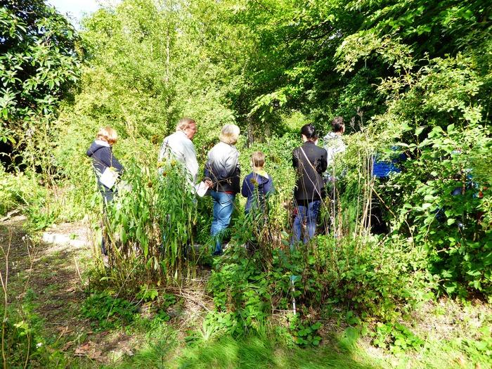 Journées du patrimoine 2017 - Visite commentée du jardin botanique