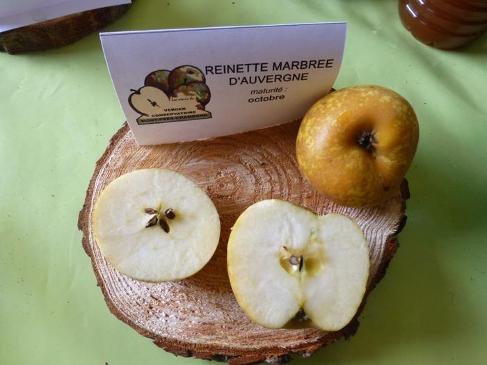 Journées du patrimoine 2018 - Visite commentée sur les pommes anciennes