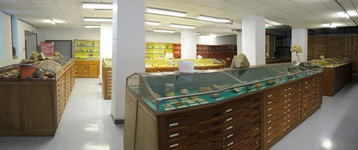 Journées du patrimoine 2018 - Visite guidée des collections de géologie de l'université Caen Normandie avec leur responsable