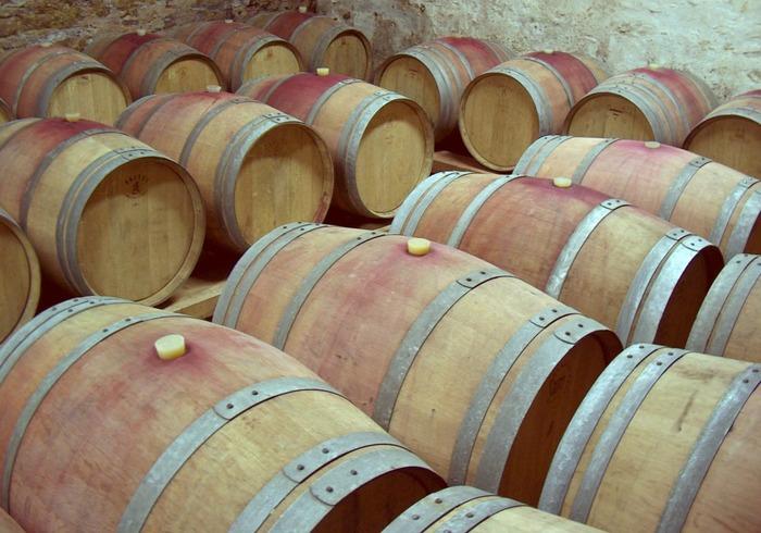 Journées du patrimoine 2018 - Visite guidée du Chai du Domaine viticole du Lycée des Territoires