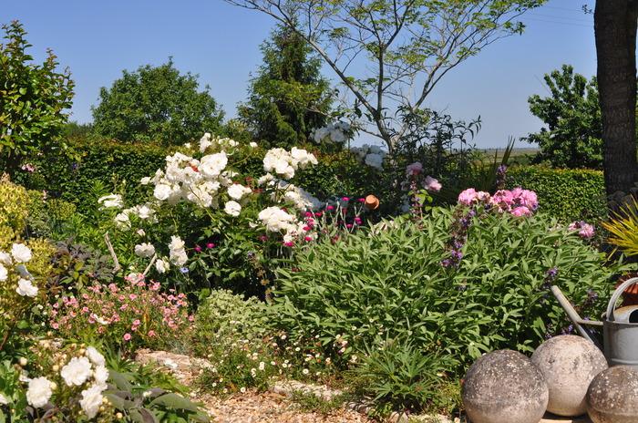 Crédits image : © Le jardin de la Chaillère