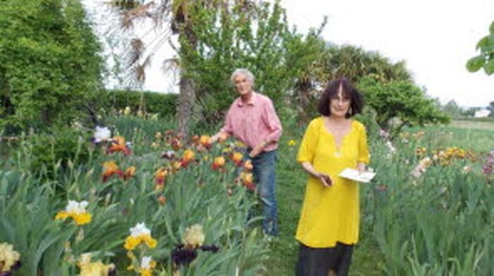Visite du jardin des Iris à Tulette (plus de 300 variétés)