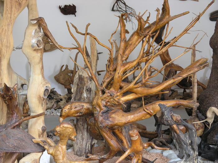 Journées du patrimoine 2018 - Visite du musée des 1001 racines