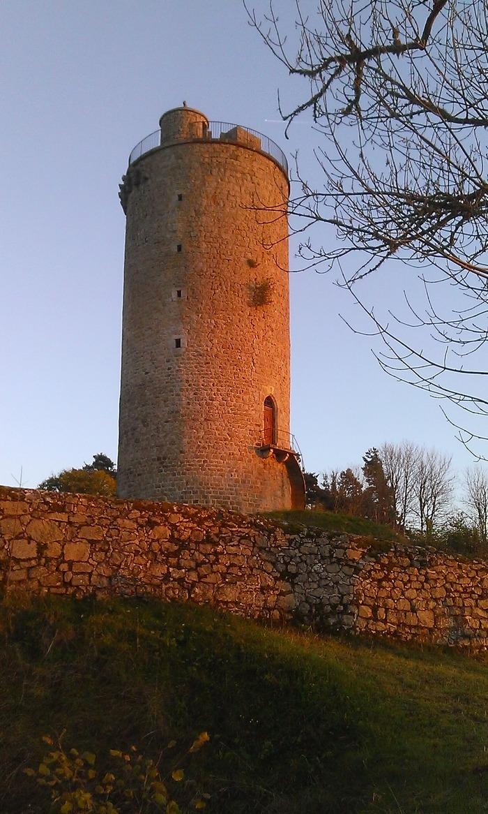 Journées du patrimoine 2017 - Visite du site archéologique de la tour de Dunières.