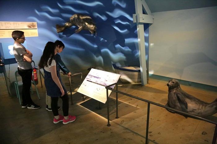 Journées du patrimoine 2018 - Visite libre de l'écomusée de la baie du Mont-Saint-Michel