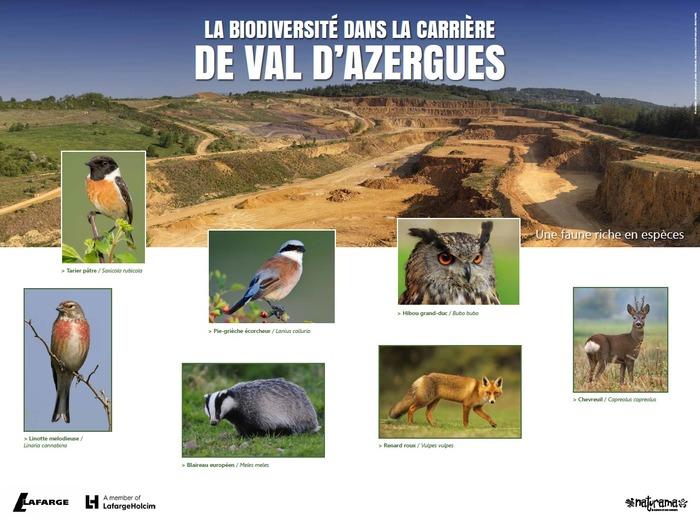 Journées du patrimoine 2018 - Visite guidée à la découverte de la biodiversité de la carrière Lafarge du Val d'Azergue.