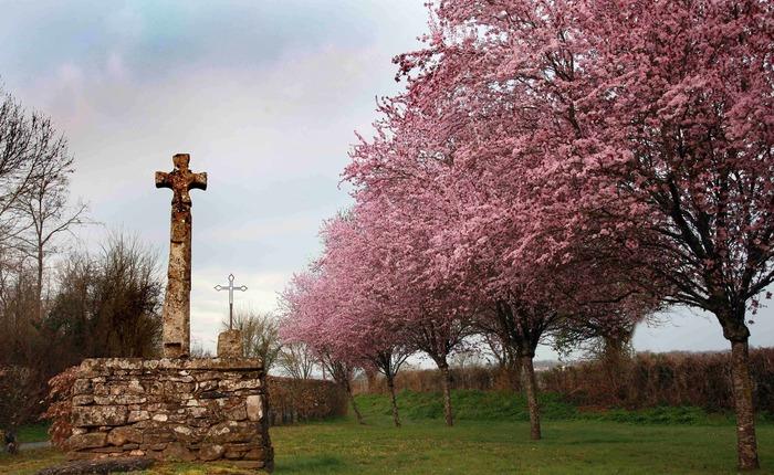 Journées du patrimoine 2018 - Visite guidée de Champeaux