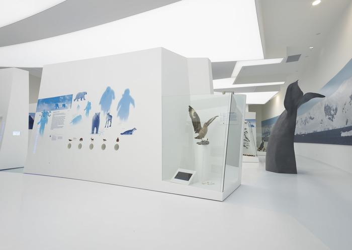 Journées du patrimoine 2018 - Visite guidée de l'exposition permanente à l'Espace des Mondes Polaires