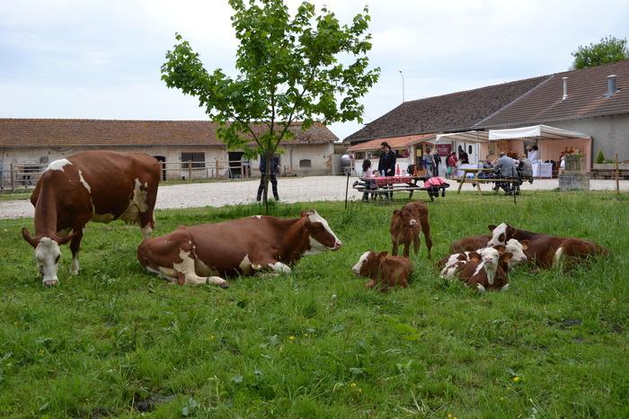 Journées du patrimoine 2018 - Visite guidée de la ferme bio de l'abbaye avec dégustation de nos produits.