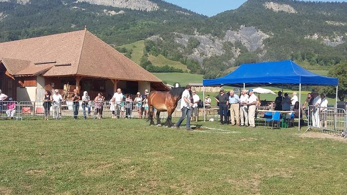 Journées du patrimoine 2018 - Visite guidée de la Maison du mulet