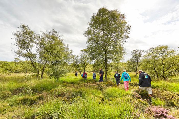 Journées du patrimoine 2017 - Visite guidée de la tourbière du Pré Maudit