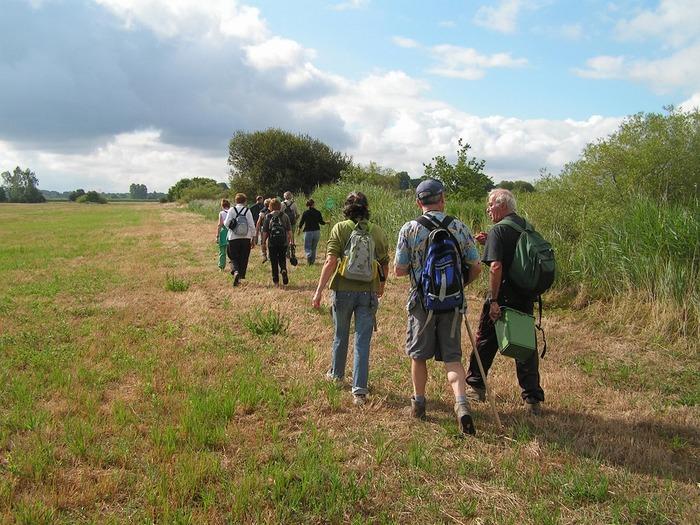 Journées du patrimoine 2018 - Visite guidée des marais de Gannedel