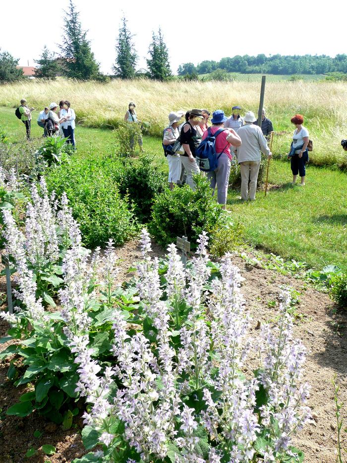 Journées du patrimoine 2018 - Visite guidée du jardin botanique de l'espace pierres folles.
