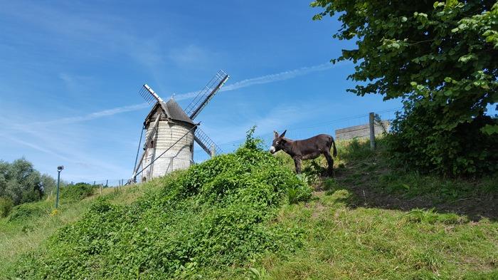 Crédits image : Commune de Watten