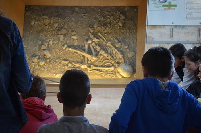 Journées du patrimoine 2018 - Visite guidée du musée de l'Homme de Néandertal