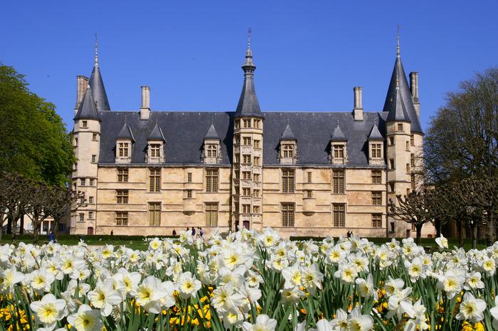 Visite guidée du Palais ducal