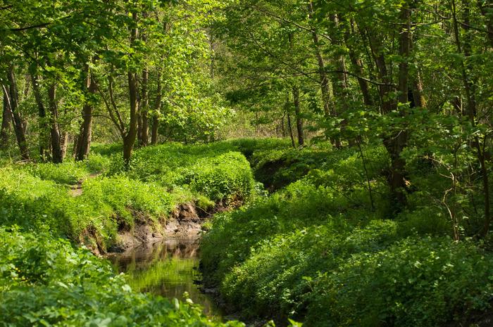 Journées du patrimoine 2018 - Visite guidée du Parc Naturel Régional de la Haute Vallée de Chevreuse.