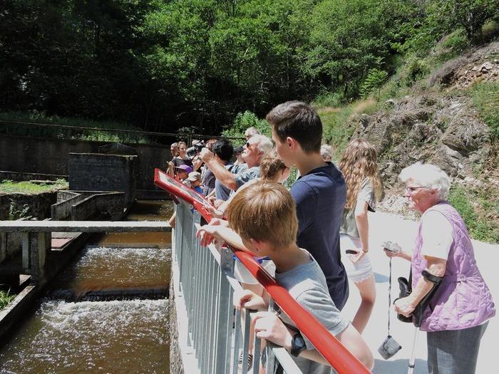 Journées du patrimoine 2018 - Découverte du sentier du barrage de l'Aigle, surnommé