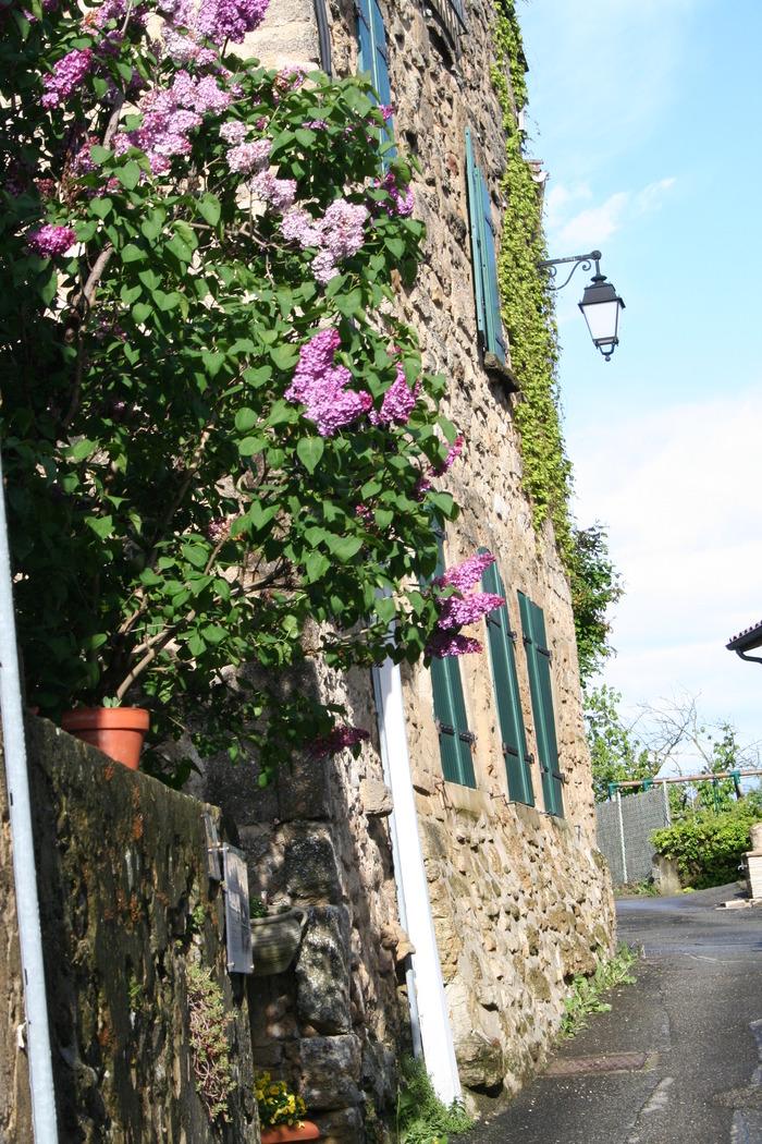 Journées du patrimoine 2018 - Visite guidée du vieux village de Montoison.