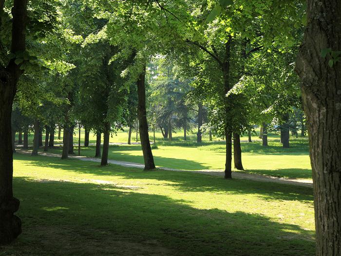 Journées du patrimoine 2018 - Visite guidée « Un parc écologique »