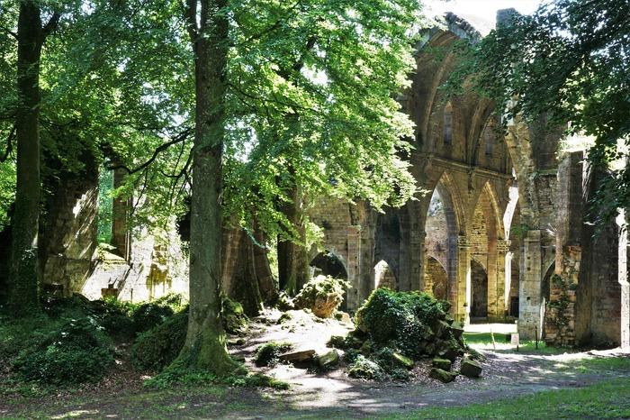 Journées du patrimoine 2018 - Visite libre de l'Abbaye de Trois-Fontaines